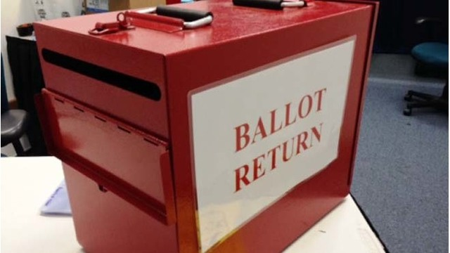 May 8 Primary: Issues on the ballot