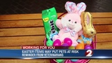 Easter products may put pets at risk